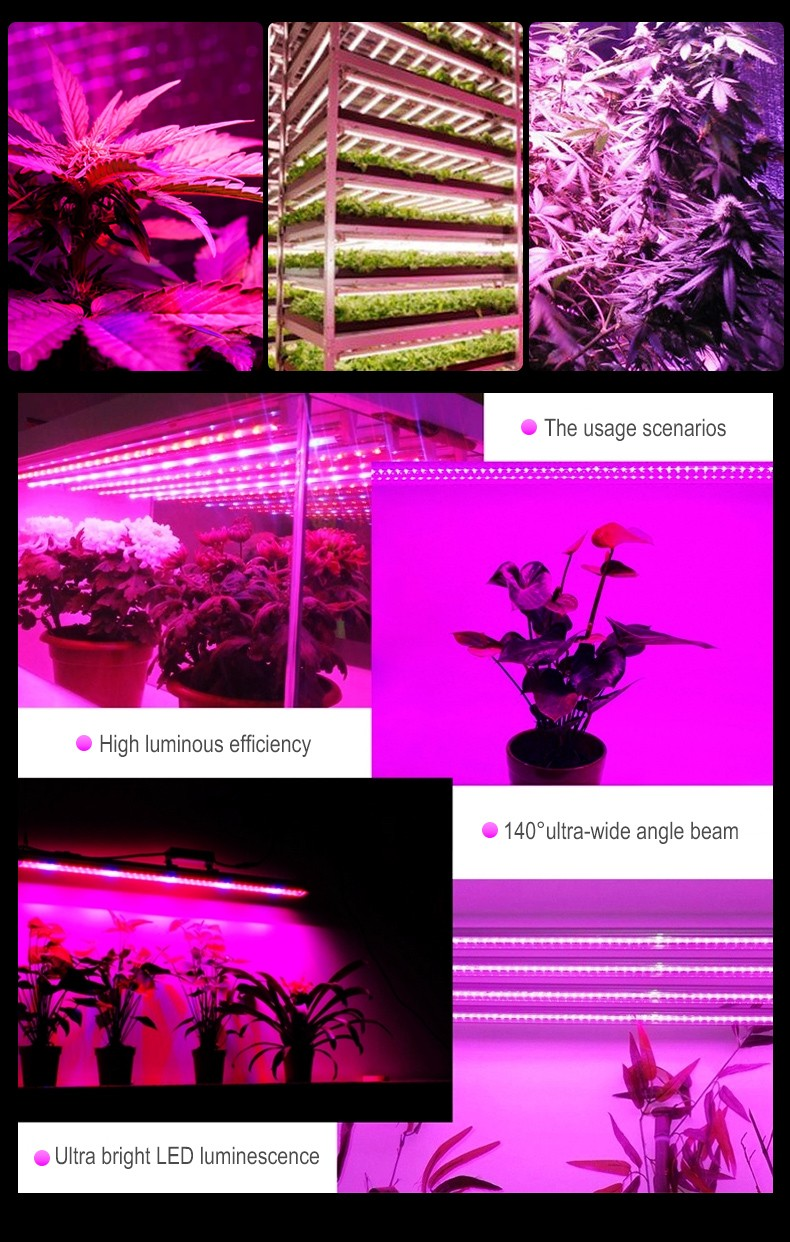 Chinese Direct  Chip LED Grow Light 500w 750w 1000W 8 Bars Hydroponics Full Spectrum Fluence Commercial Planting Fixture FL-ZWD-XT2