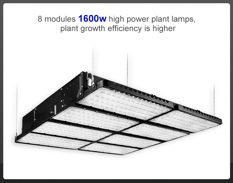 High power module design full spectrum 1600w led grow light for plantFL-ZWD-YY1