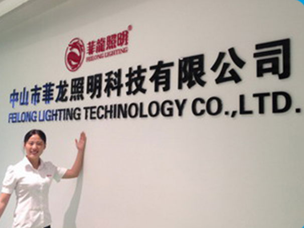 Feilong Lighting Technology
