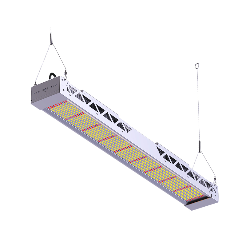300W 600W LED Grow Light Full Spectrum Indoor Plant Lamp IP65  Lighting for For Plant Flower Vegetable Growing Succulents Indoor Greenhouse Hydroponics FL-ZWD-LYH3