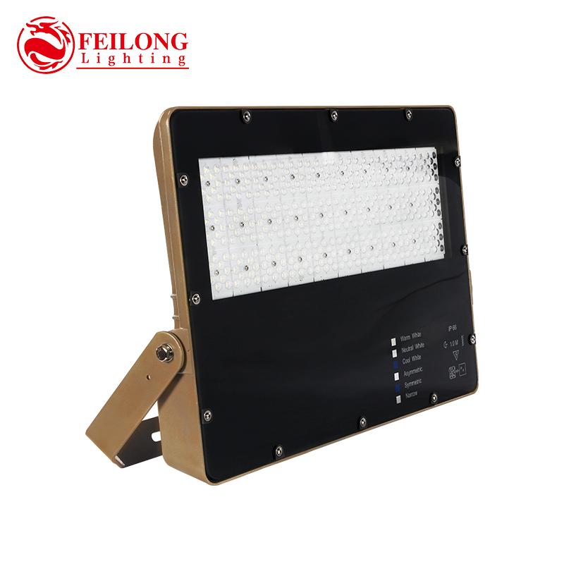 100w 200w Led Flood Lights IP66 Waterproof outdoor 300w cricket baseball stadium lighting Adjustable windproof bracket
